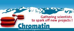 Chromatin_Logo
